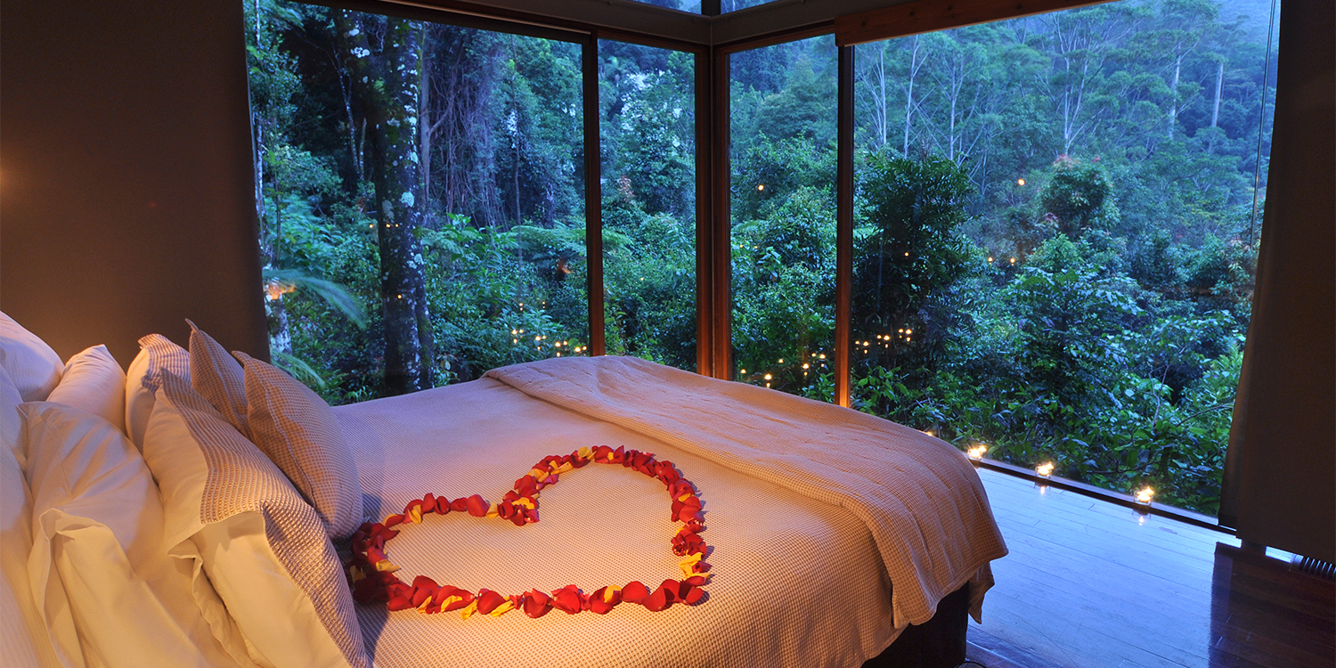 The Glass Terrace Bungalows have immersive rainforest views from the bedroom
