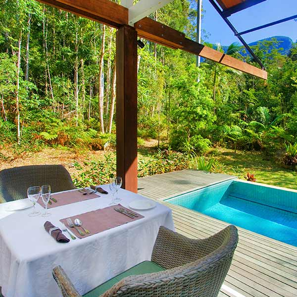 See more about Cedar Lodge, our Luxury Rainforest Lodge