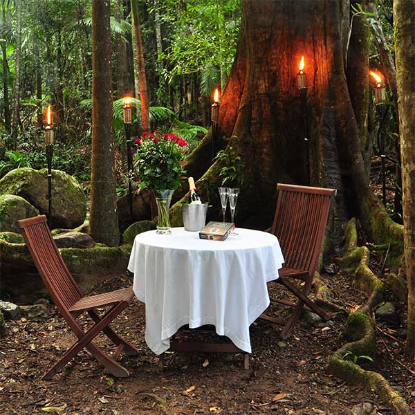 See more about our Summer Rainforest Proposal & Romantic Package