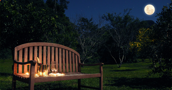 The orchard is a stunning place to watch the night settle and the moon rise with a bottle of champagne and some candles